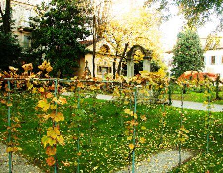 vigna-leonardo-milano-giardino3